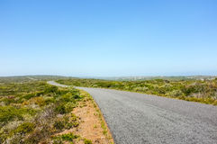 Road in natioanl park. Beautiful colored scenery with crystal clear blue sky and road leading to desert Royalty Free Stock Images
