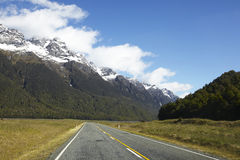 Road in the national park Royalty Free Stock Photo