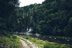 Road in the nature. Along the river Royalty Free Stock Image