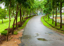 Road in the nature Royalty Free Stock Image