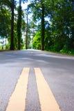 Road. Nature forest chantaburi stock photo