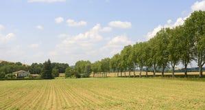 Road near Albi (France) Stock Photography