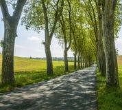 Road near Albi (France) Stock Photos