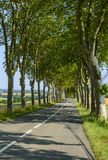 Road near Castres (France) Royalty Free Stock Photo