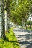 Road near Castres (France) Royalty Free Stock Photos