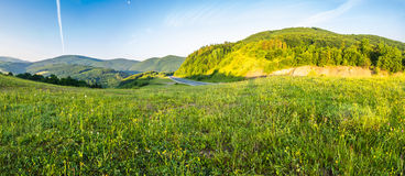 Road near the forest in mountains at sunrise Stock Photo