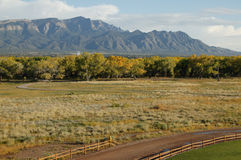Road near and forest near Sandia mountains, New Mexico, USA Stock Images