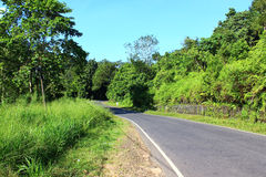 Road near Kandy Royalty Free Stock Image