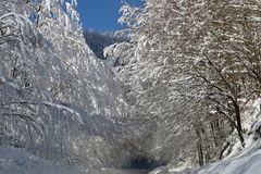 Road2 nevado Imagem de Stock