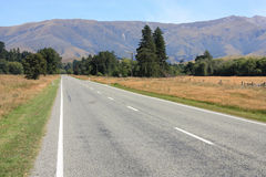 Road in New Zealand Stock Photography