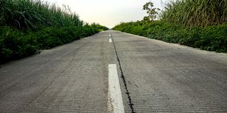 The road next to the sugar cane garden in the morning stock images