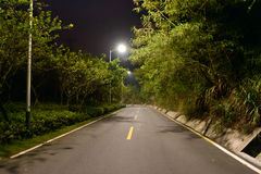 Road at night Stock Photography