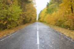 Road in the autumnal forest Blured royalty free stock image