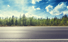Road in north forest Stock Photography