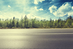 Road in north forest Royalty Free Stock Images