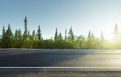 Road in north mountain forest Royalty Free Stock Image
