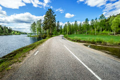 Road in Norway empty nanure Royalty Free Stock Images
