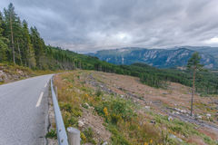 The road in Norway. With view on a forest and the mountain Royalty Free Stock Images