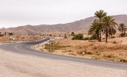 Road in oasis in Sahara desert, Tunisia Royalty Free Stock Photos