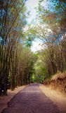 Road in Ob-Luang Stock Photos
