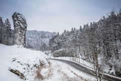 Road in Ojcowski National Park in Poland. In winter Royalty Free Stock Photo