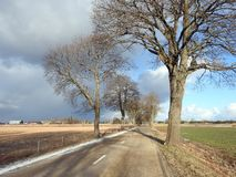Road, old trees, homes and beautiful cloudy sky, Lithuania. Way, old trees, landscape ,homes and beautiful cloudy sky before rain in spring royalty free stock photo