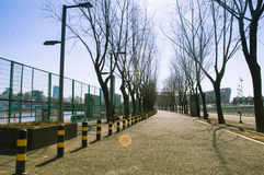 Road in Olympic Park. A path China Beijing Olympic Park Royalty Free Stock Photo