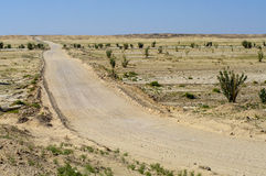 Road in Oman Desert Stock Image