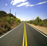 Road in the Organ Pipe Stock Photos