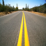Road in the Organ Pipe National Monument Stock Photography