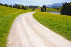 Road over meadow in spring Royalty Free Stock Image