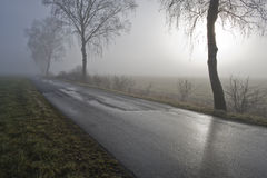 Road over misty moor. Scenic view of road over misty moor viewed at twilight Royalty Free Stock Photos