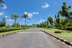 Road and palms. Road bordered with palm trees in Bali, Indonesia Royalty Free Stock Photo
