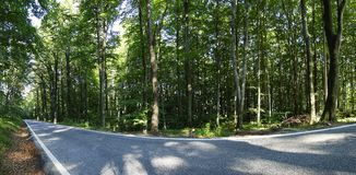 Road panorama Royalty Free Stock Photo
