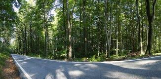 Road panorama of Sljeme in Croatia. Road through the woods in Croatia. Hill Sljeme royalty free stock photo