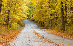 Road through park in Autumn. A road winds through a forest in autumn Stock Photos