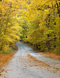 Road through park in Autumn Royalty Free Stock Photography