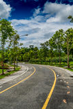 Road in the park Royalty Free Stock Photos