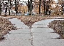 The road in the park diverge in different directions, fork Royalty Free Stock Photos