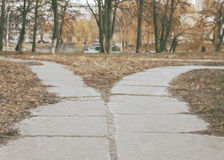 The road in the park diverge in different directions, the road f Royalty Free Stock Photos