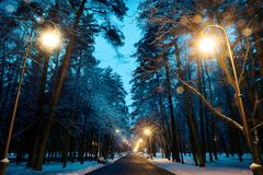Road in the park. Road in the evening in the park in winter Royalty Free Stock Images