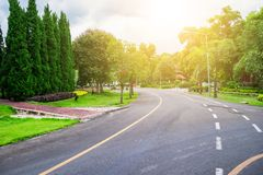 Road in the park or garden with trees, flowers and plant beside the way for walk run and transportation with beautiful landscape s. Cene with sunlight Stock Image