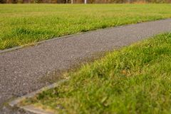 Road in the park with green grass stock photo