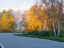 Road through park stock photography