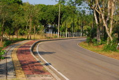 Road in the park and nature Royalty Free Stock Photography