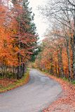 Road in the park in october Royalty Free Stock Image