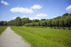 Road through park in summer Royalty Free Stock Image