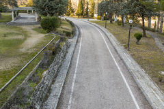 Road in the park Stock Photography