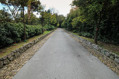 Road in park wide angle photography. Stock Image