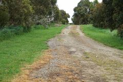 Road, Path, Dirt Road, Nature Reserve Royalty Free Stock Photography
